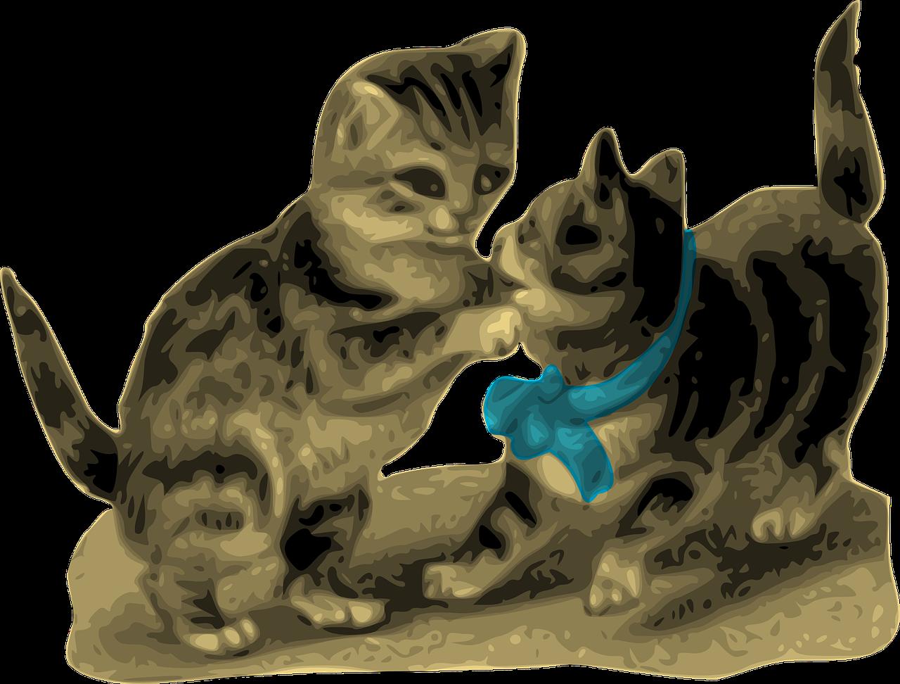 seguro-felino