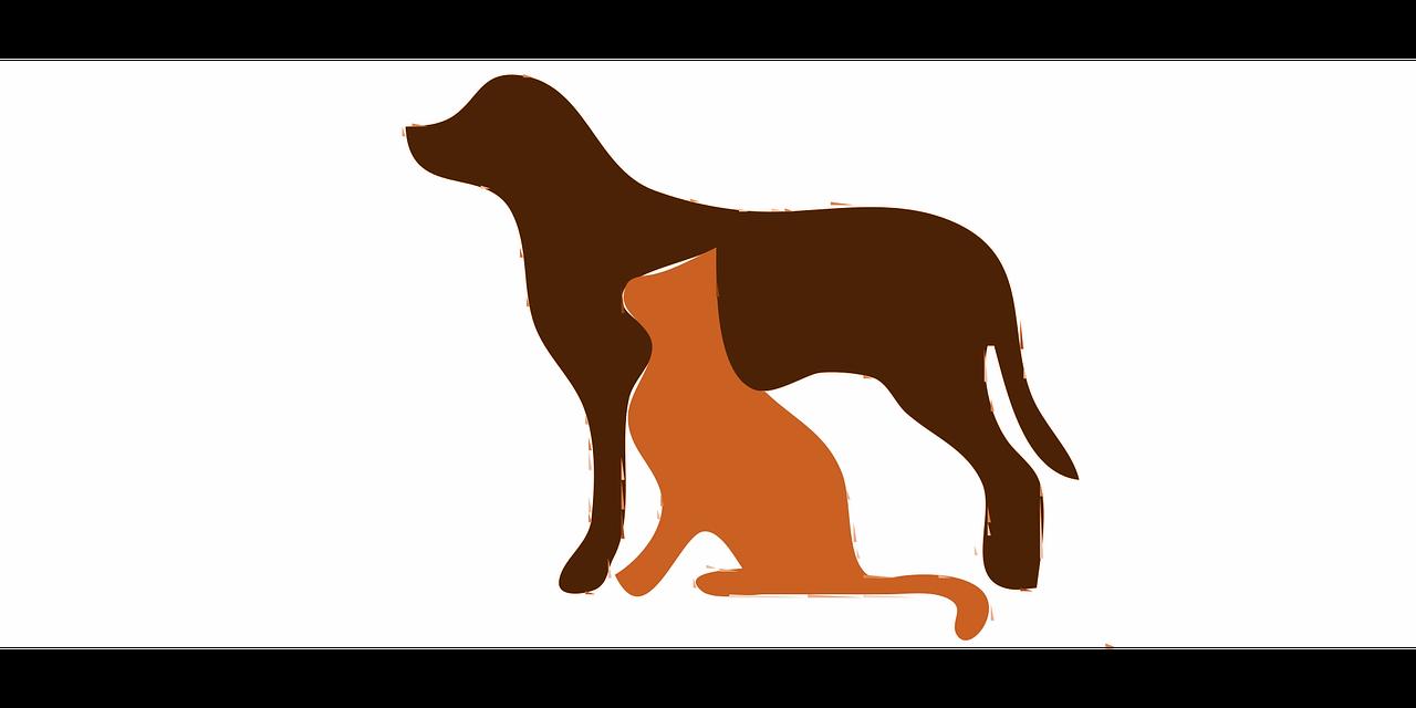 seguros-para-mascotas